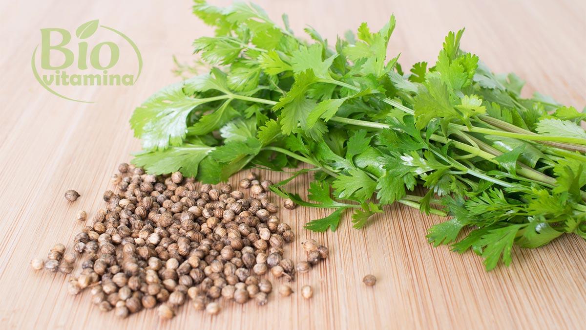 coriandru-cura-slabire-ceai-smoothie-dieta
