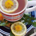 Metode naturiste pentru sănătate şi curăţare rinichi